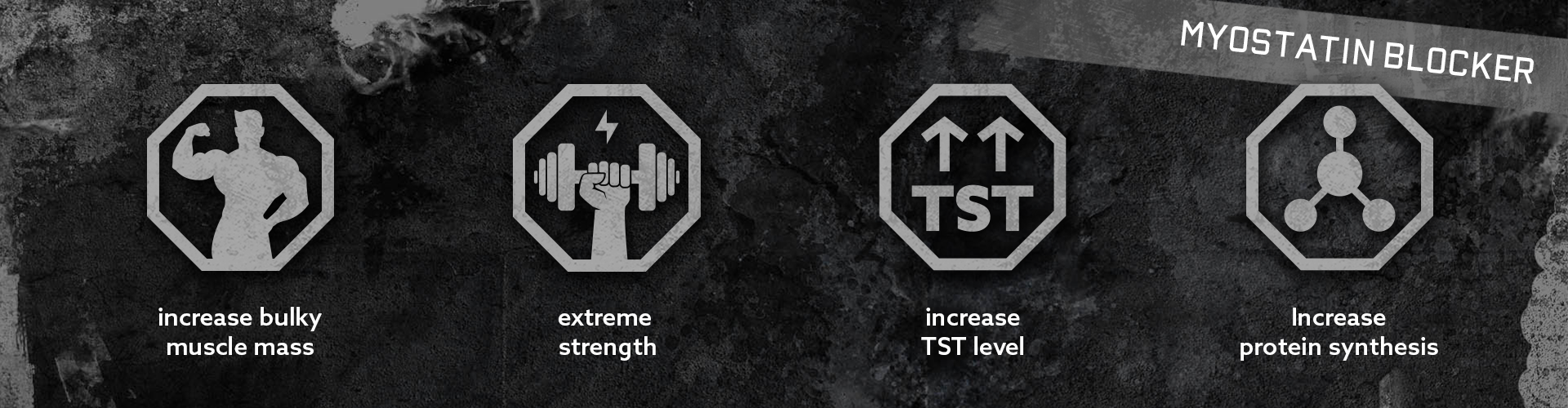 Titan 3 0 Warrior Labs | Prohormones eu